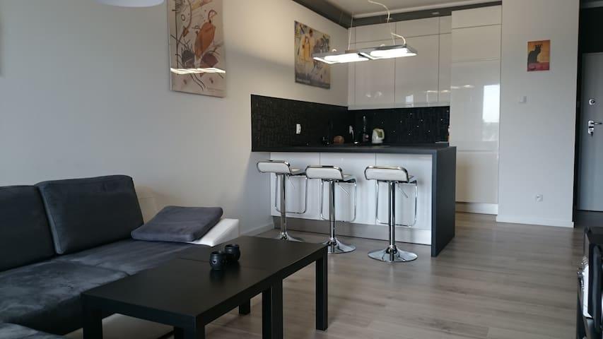 Nowoczesny apartament, Poznań - พอซนัน - อพาร์ทเมนท์
