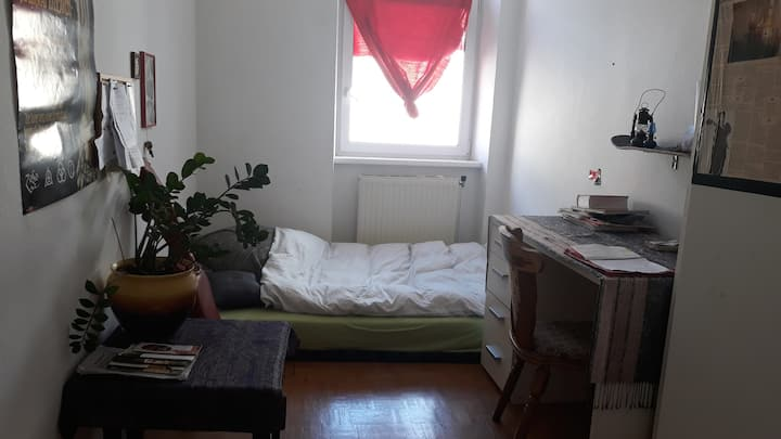 Room to rent in a student house
