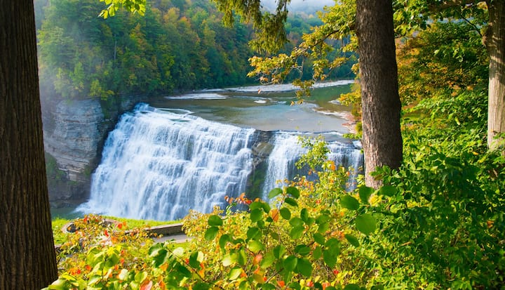 Great Location 20 Minutes to Letchworth State Park