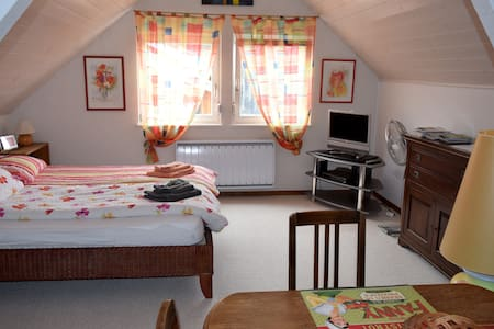 Large, cosy and bright loft near Basel - Oltingue