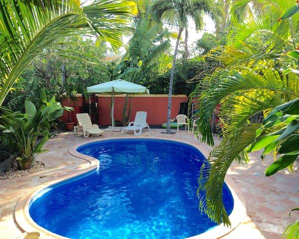Villa avec piscine St Gilles les Bains - Saint-Gilles les Bains - Villa