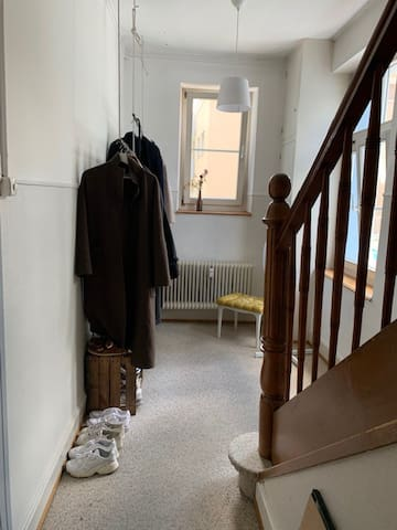 Cosy room in Basel - Stadt,