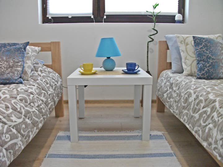 Spacious flat with 2 bedrooms, kitchen and balcony