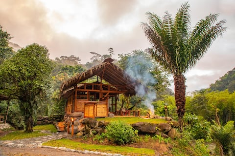 Remote Luxurious Riverside Jungle Retreat/Farmstay