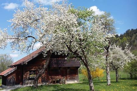 Alleinstehendes Holzhaus in sehr ruhiger Lage
