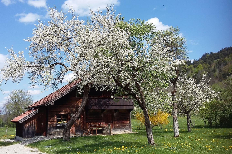 Das Ferienhaus im Frühjahr