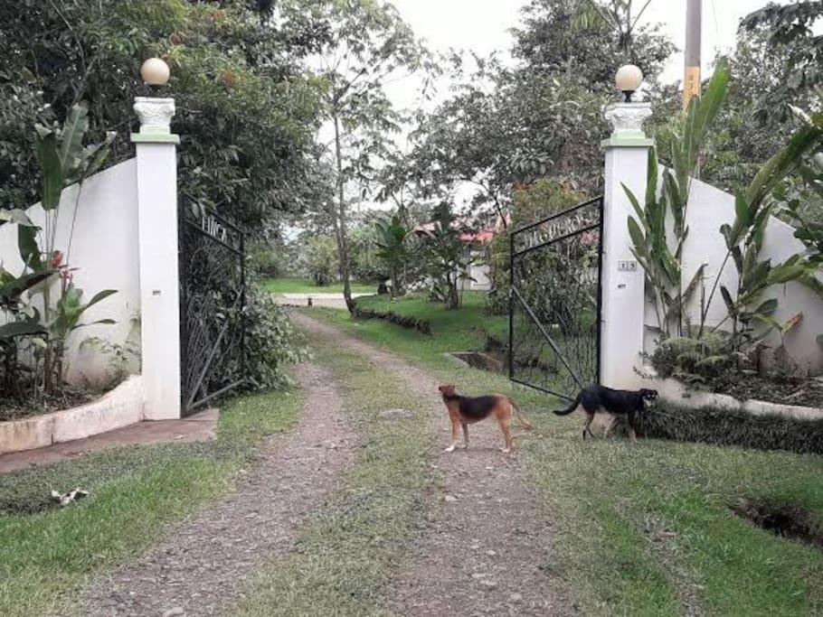 Entrance gate to property