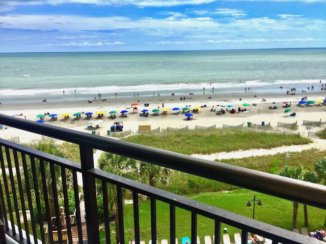 Oceanfront Private 1 Bedroom suite, Dogs Welcome
