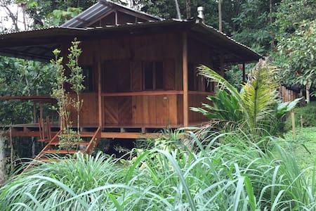 Fincalegre Cabin for 2 in the tropical forest.