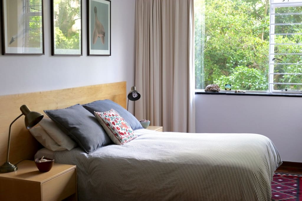 Master bedroom with gentle afternoon sun and views of the garden.