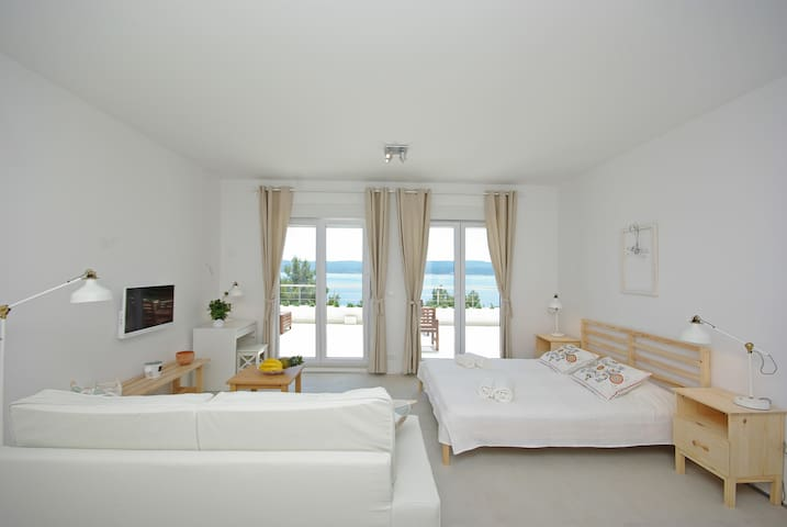 Living room with pull-out sofa & bed