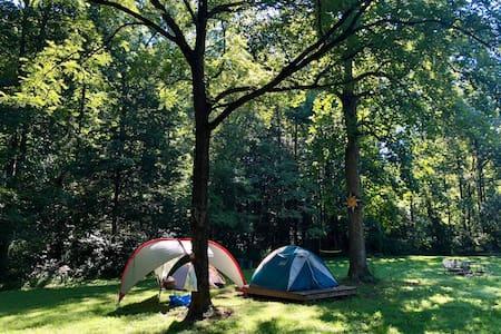 Camping Platform @ Cane Creek Farm