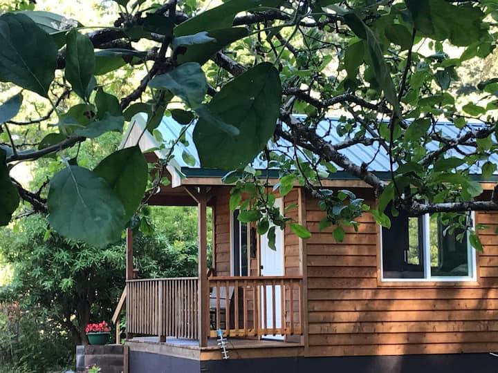 Serene Cabin in the Redwoods