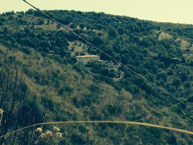 Residenza tra gli olivi. - Agropoli - House