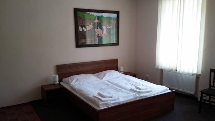Penzion U Švejků - pokoj 1