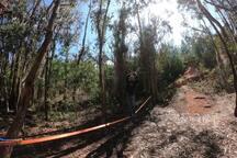 Tenemos zona de actividades en nuestra Reserva el Bosque, para que pongas a prueba tus miedos!!!