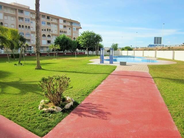 Apartamento de 3 dormitorios - Torrevieja - Leilighet
