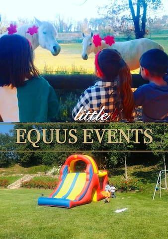 Little Events. Equus Events.