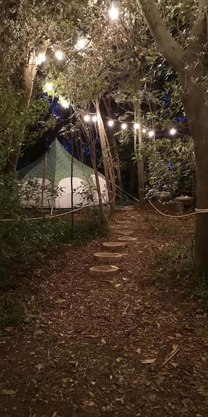 Glamping in the Trees - Chardonnay