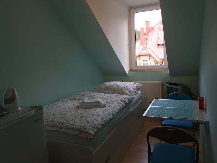 Loft apartment Svahova