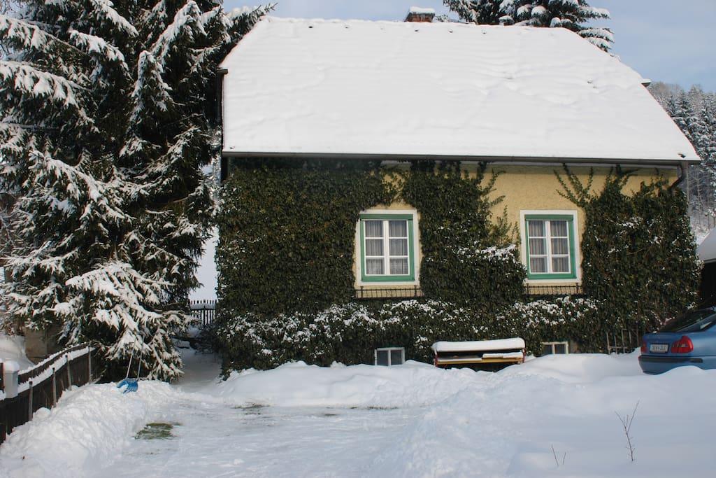 Efeuhaus im Winter