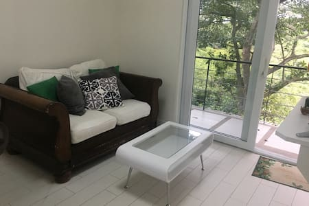 $850 Lovely modern  flat, 2 bedroom, two parking - San Jose