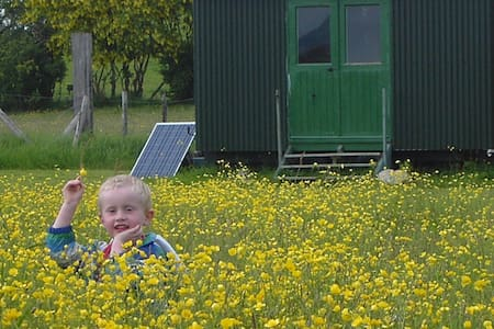 Rural, quiet, Shepherds hut eco Glamping - Llandysul