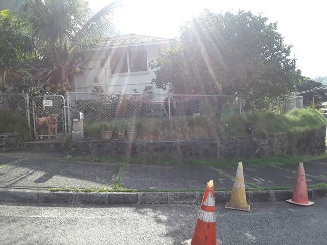 The Aloha Bunkhouse Room #1 A