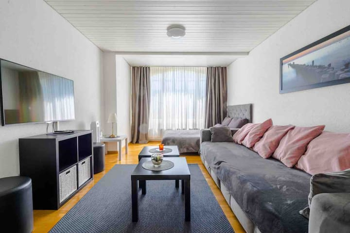 Cozy living room with comfortable sleeping sofa (160 / 200 cm ) for two persons and large comfortable couch for one person.