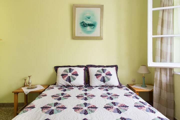 Cozy house with lovely garden - Nea Smirni - House