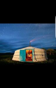 mongolian nomadic family life and horse riding