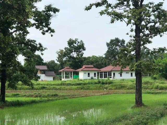 Suwan Organic farmstay , 3 bungalow ( 2/4 p)
