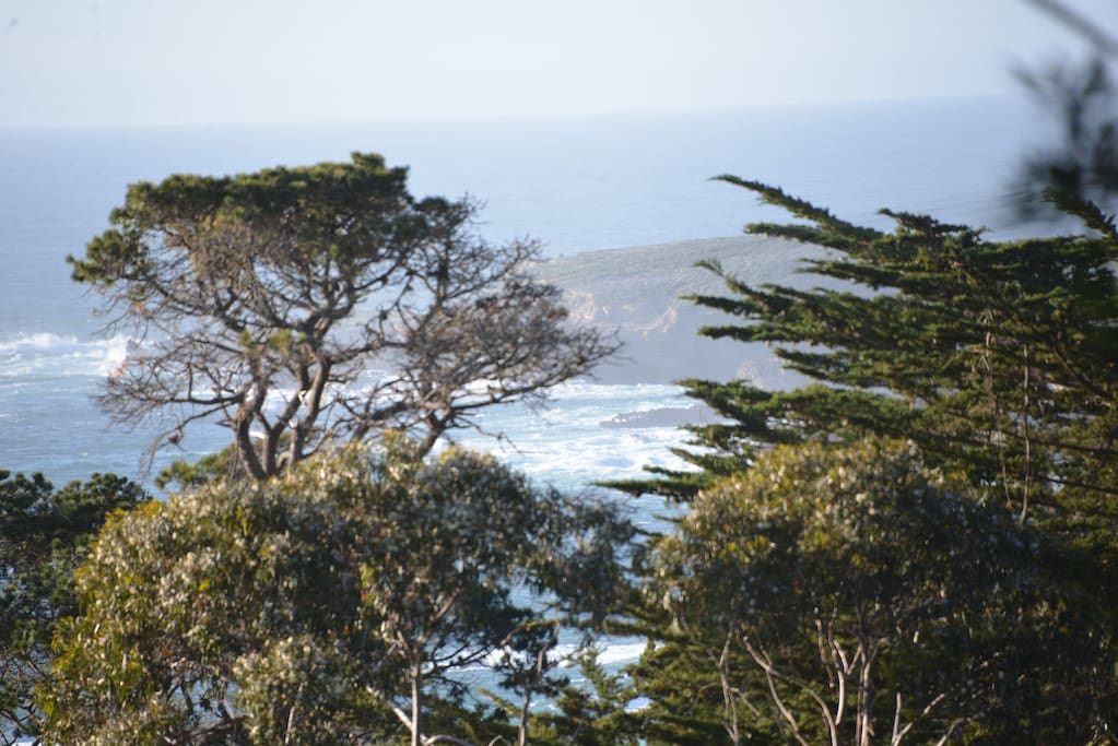 View of Pt. Lobos from the Master Suite balcony.