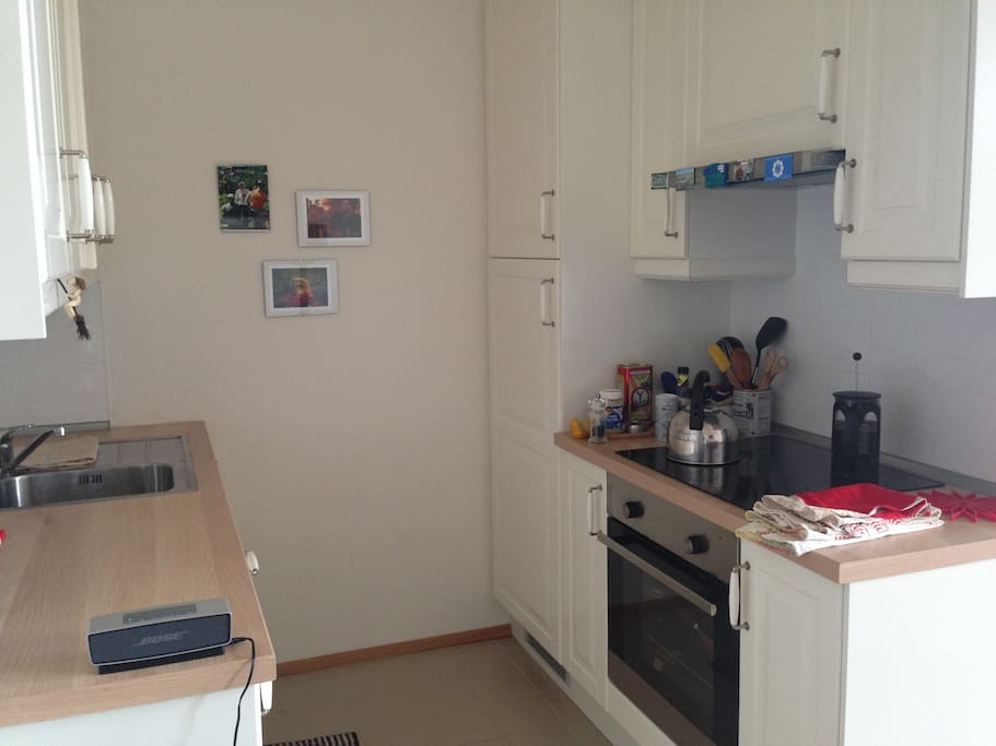 Modern kitchen area with dish washer. Coffee and tea provided.