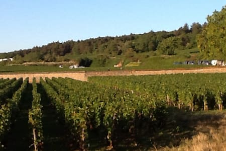 La Bourgogne au pied des vignes - Apartamento
