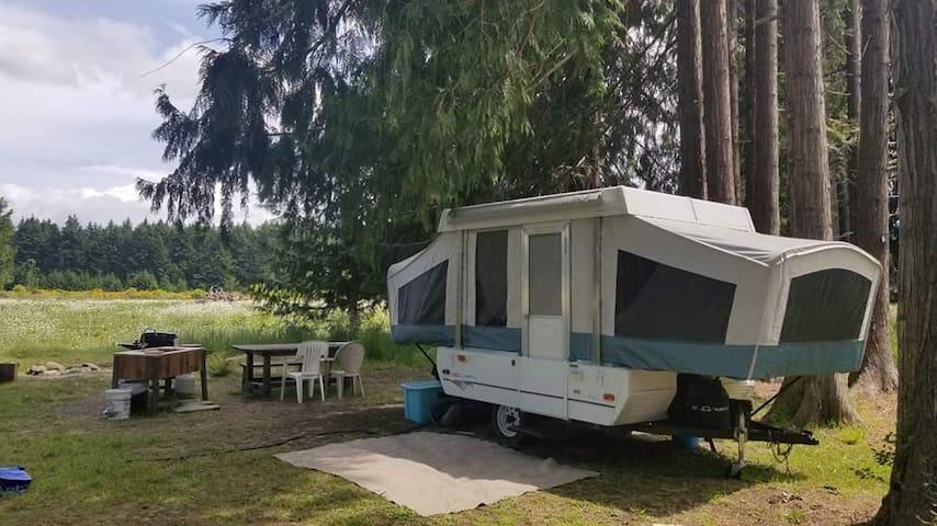 Sunny Sequim RV or tent campsite