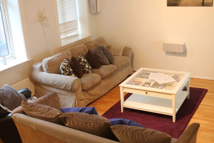 Spacious 4 bedroom (5/6 beds) flat in central Oslo