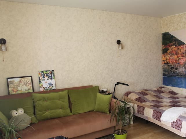 Comfortable apartment near Moskow