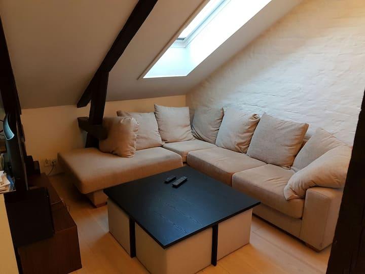 Cozy loft in popular Grunerløkka