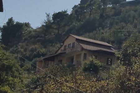 Done Villa Tepelene