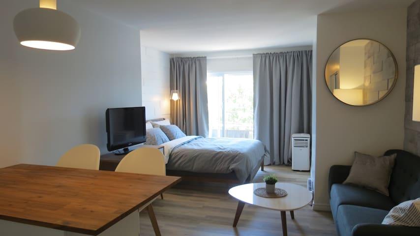 Studio style Hotel Condo - Mile-End/Plateau