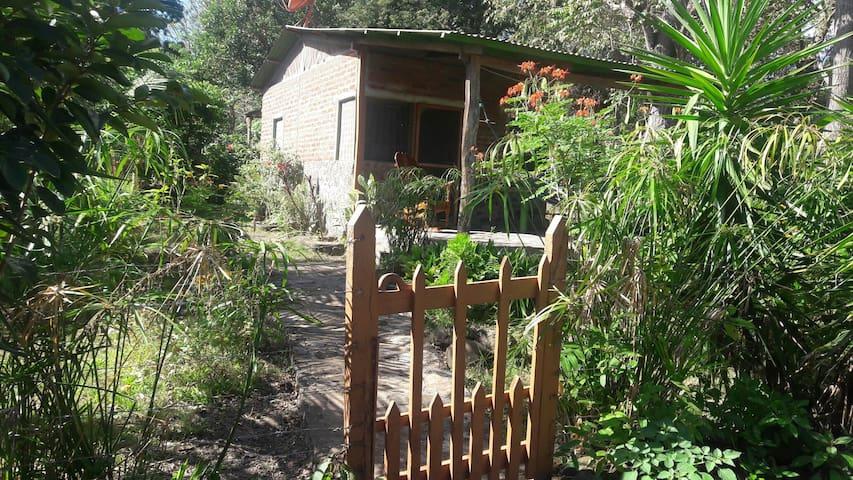 Tony's beach hut - Balque - Maison