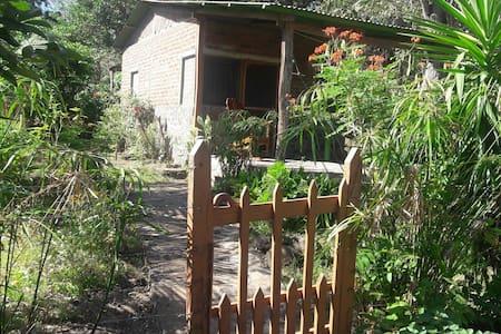 Tony's beach hut - Balque