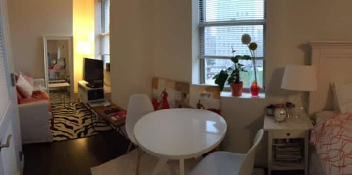 Cozy studio in Jersey city