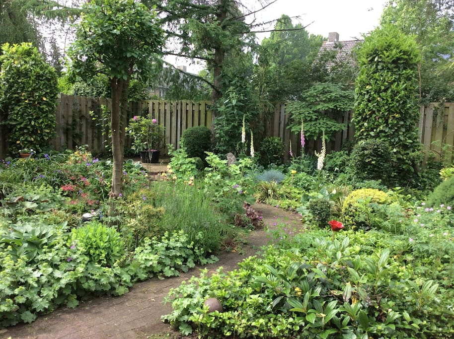 uitzicht op de tuin vanuit de zithoek