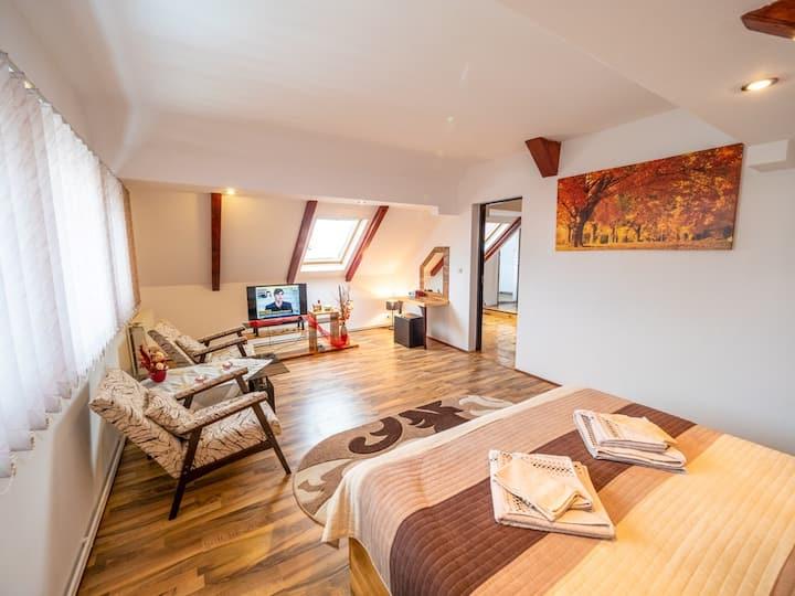 Apartament studio Rosenau