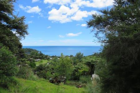 Hidden Gem - Camping at it's best - Whanarua Bay