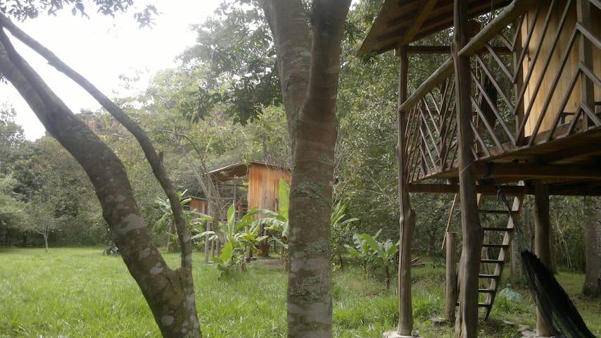 River Cabin, en Rumi Wilco Ecolodge