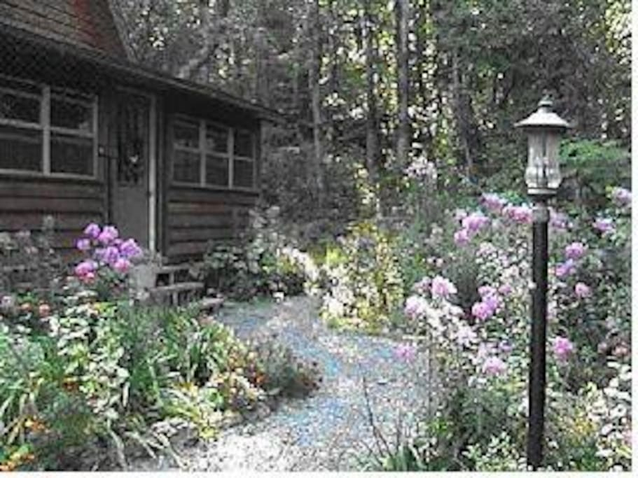 Cabin with wildflower gardens around it, and wooded hillside