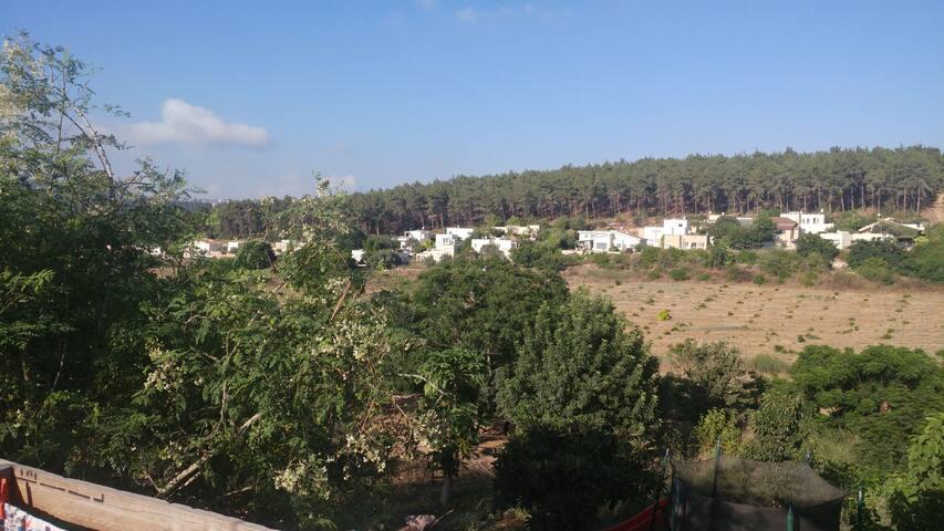 Nazareth countryside (Zippori village)